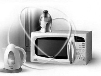 DISEASES OF DOMESTIC EQUIPMENT