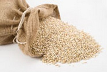 ABOUT THE BENEFITS OF PEARL BARLEY