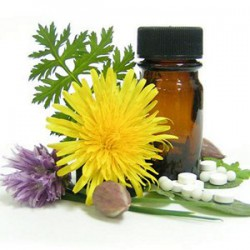 THE POSSIBILITIES OF ALTERNATIVE MEDICINE IN RESTORING HEALTH AND EXTENDING LIFE