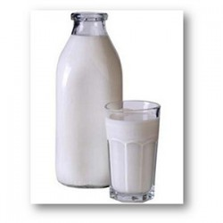 DAIRY PRODUCTS AGAINST PUTREFACTIVE BACTERIA