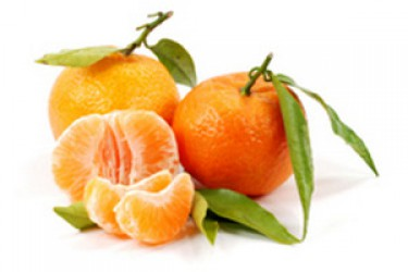 MANDARIN IS THE SOURCE OF PHYSICAL AND SPIRITUAL STRENGTH