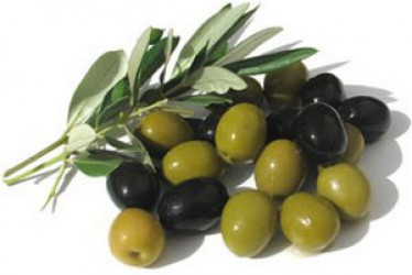 HOW USEFUL OLIVES