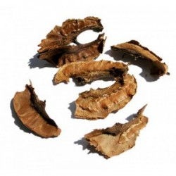 KEEP PARTITIONS WALNUTS IS HEALING CURE FOR MANY DISEASES